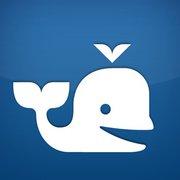 Beluga corporate logo